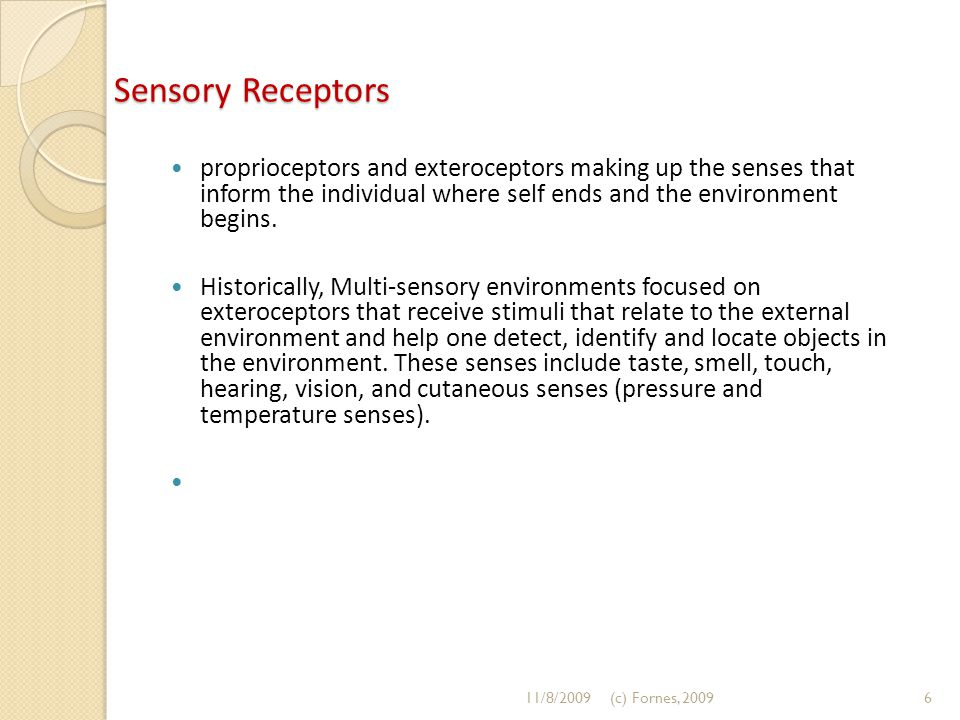 Sensory Receptors proprioceptors and exteroceptors making up the senses that inform the individual where self ends and the environment begins.