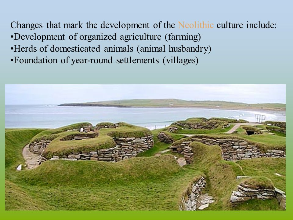 Changes that mark the development of the Neolithic culture include: Development of organized agriculture (farming) Herds of domesticated animals (animal husbandry) Foundation of year-round settlements (villages)