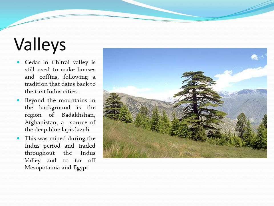 Valleys Cedar in Chitral valley is still used to make houses and coffins, following a tradition that dates back to the first Indus cities. Beyond the