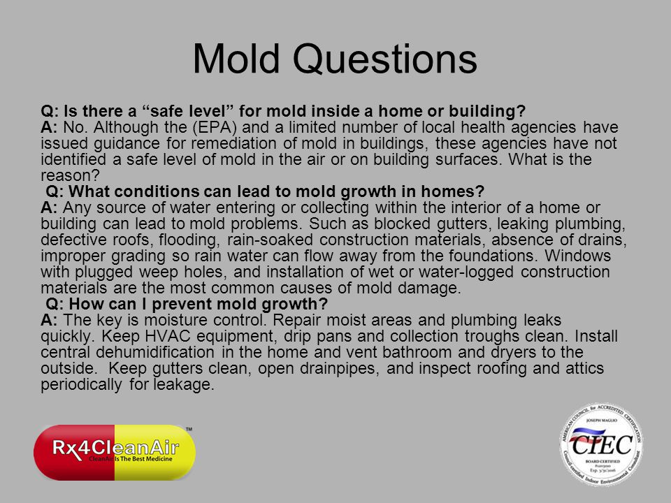 Mold Questions Q: Is there a safe level for mold inside a home or building.