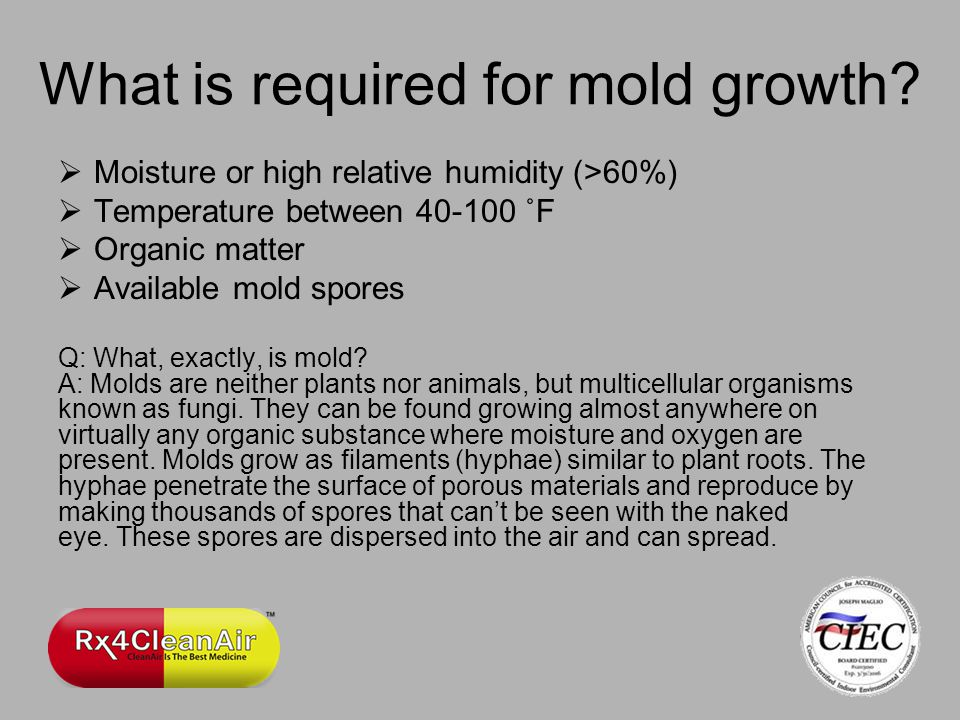 What is required for mold growth.