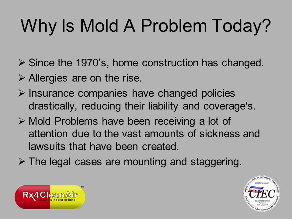 Why Is Mold A Problem Today. Since the 1970s, home construction has changed.