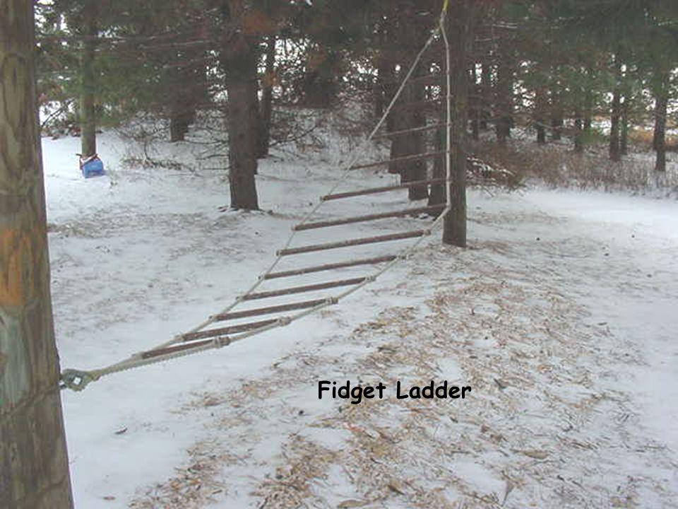 Fidget Ladder