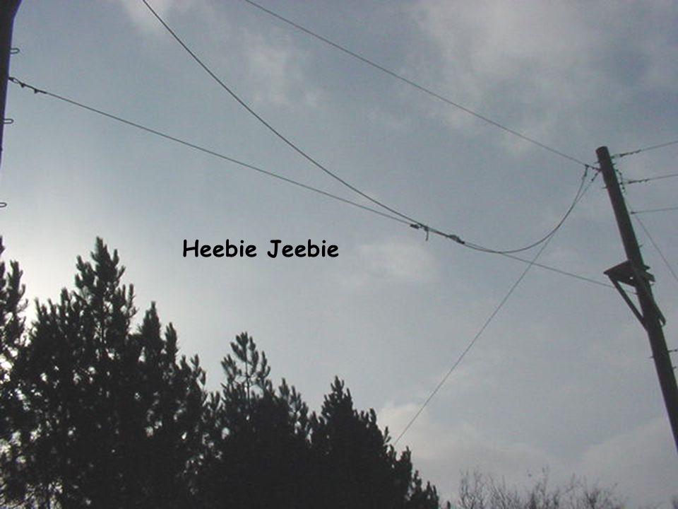 Heebie Jeebie