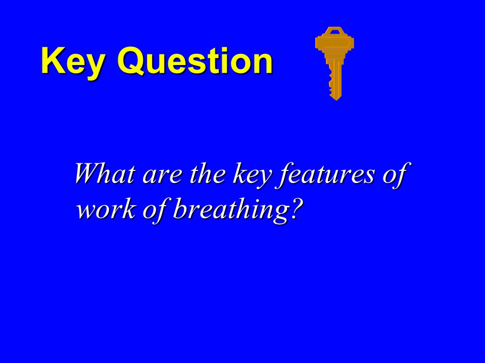 Key Question What are the key features of work of breathing.