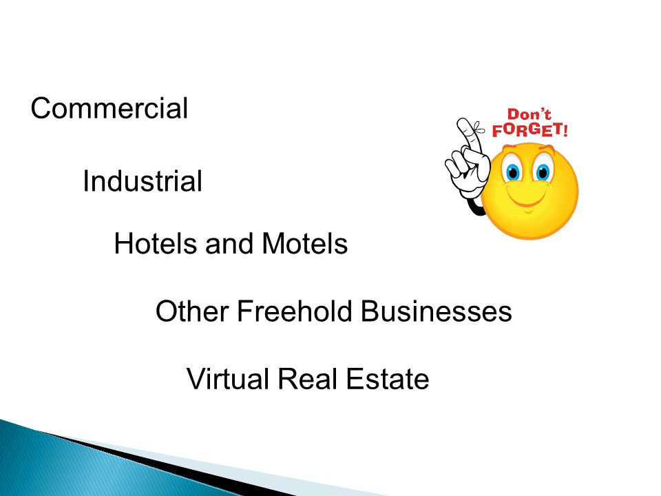 Commercial Industrial Hotels and Motels Other Freehold Businesses Virtual Real Estate