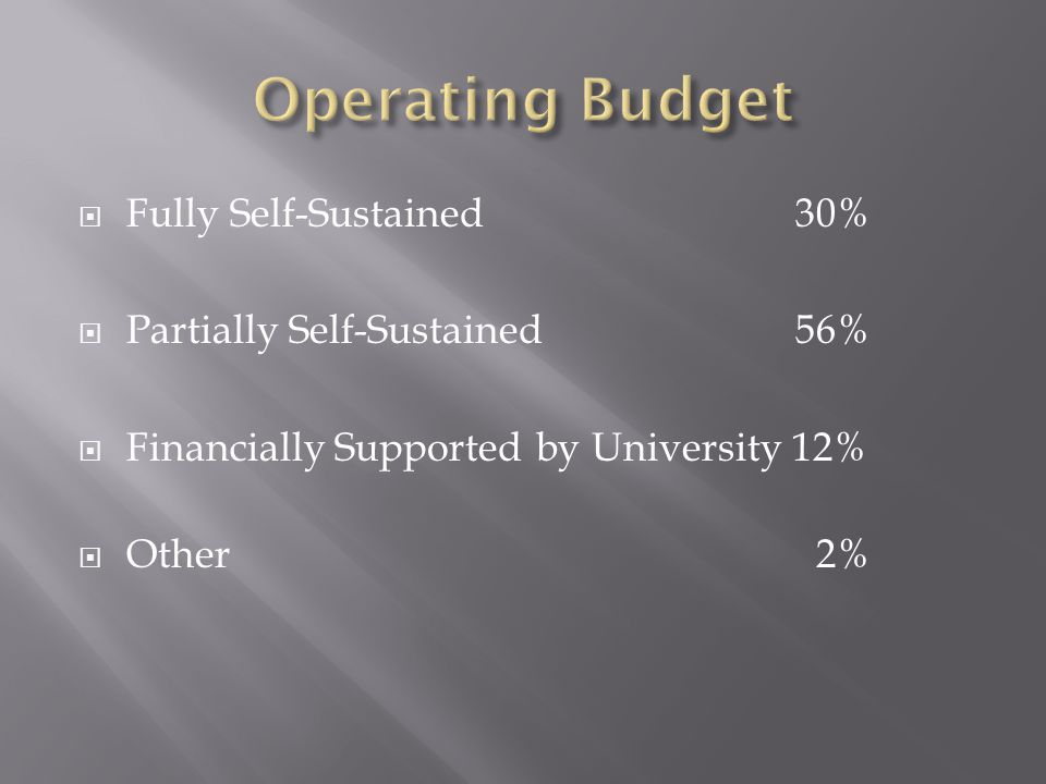 Fully Self-Sustained30% Partially Self-Sustained 56% Financially Supported by University 12% Other 2%
