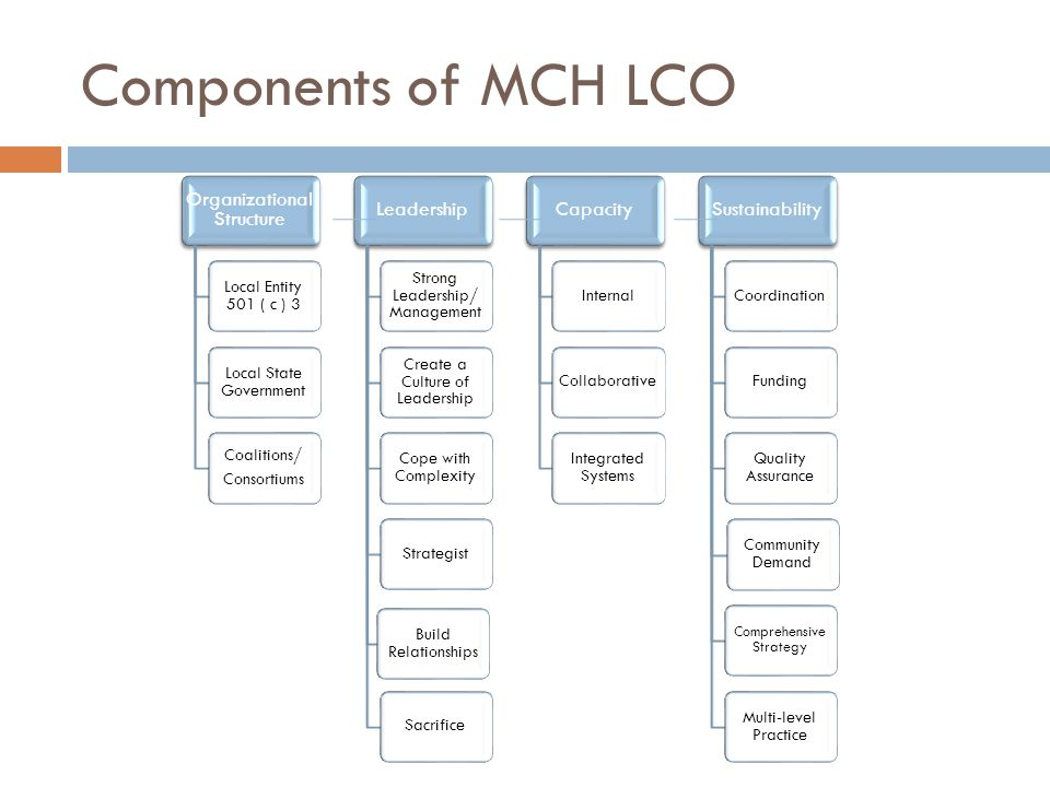 Components of MCH LCO Organizational Structure Local Entity 501 ( c ) 3 Local State Government Coalitions/ Consortiums Leadership Strong Leadership/ Management Create a Culture of Leadership Cope with Complexity Strategist Build Relationships Sacrifice Capacity InternalCollaborative Integrated Systems Sustainability CoordinationFunding Quality Assurance Community Demand Comprehensive Strategy Multi-level Practice