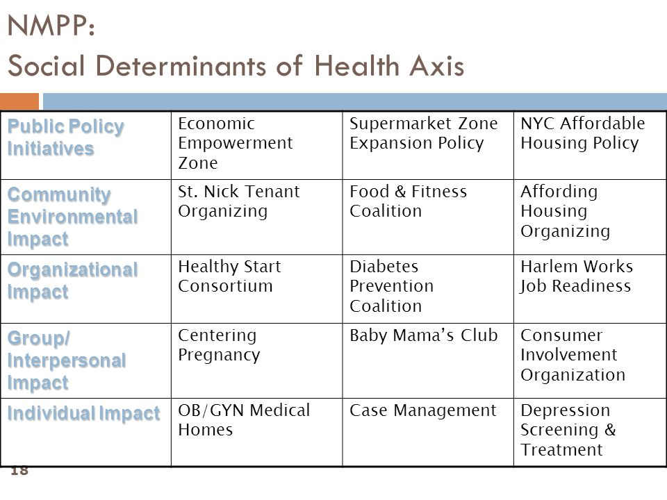 18 NMPP: Social Determinants of Health Axis Public Policy Initiatives Economic Empowerment Zone Supermarket Zone Expansion Policy NYC Affordable Housing Policy Community Environmental Impact St.