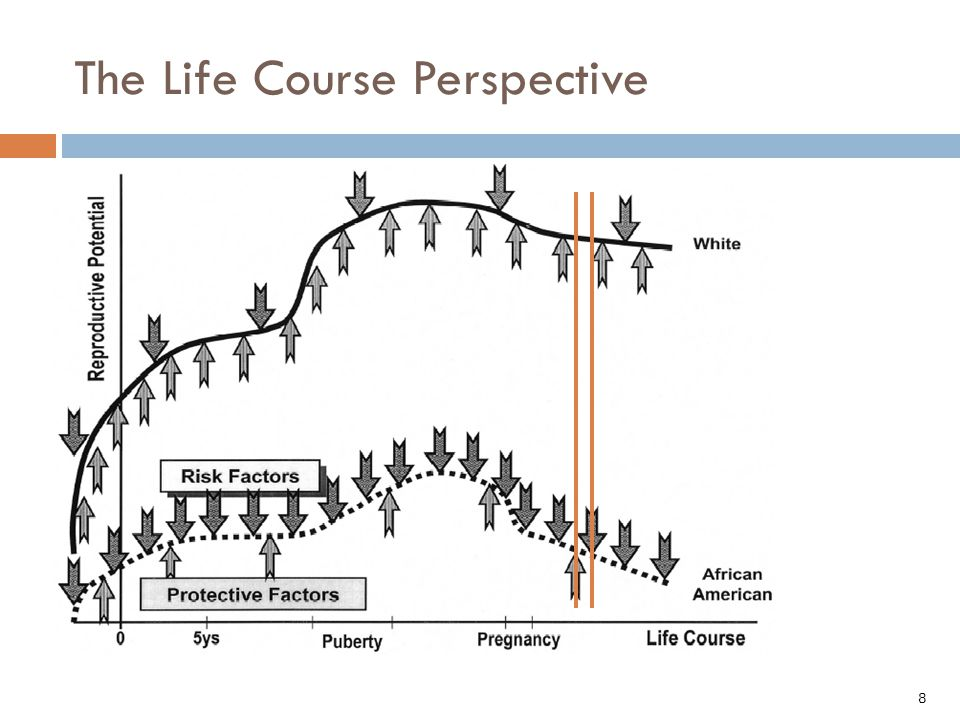 8 The Life Course Perspective Lu MC, Halfon N.