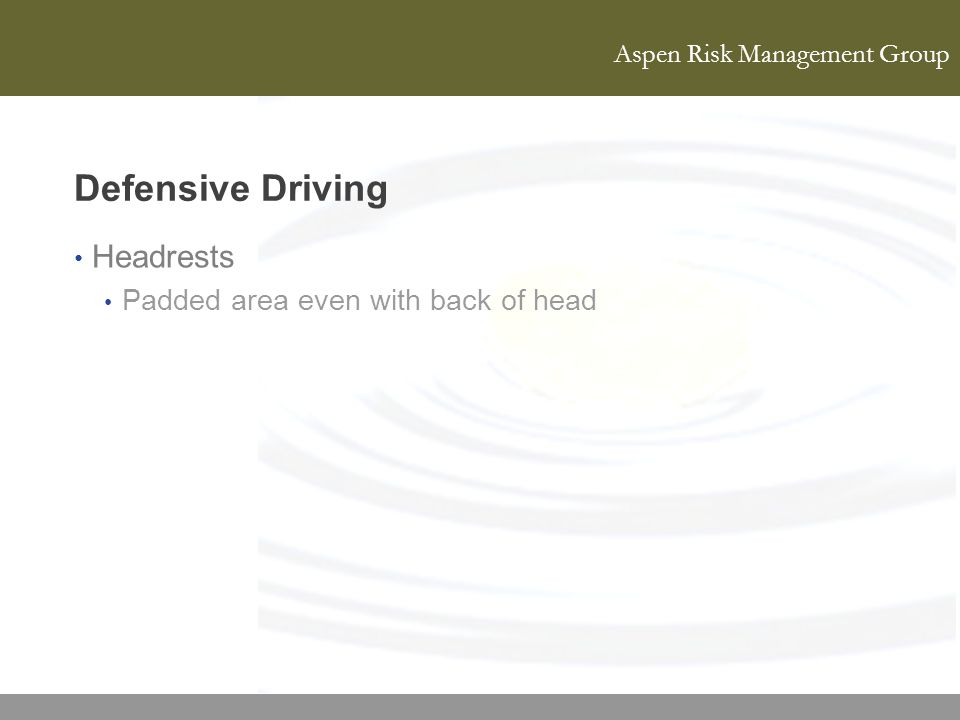 Aspen Risk Management Group Defensive Driving Headrests Padded area even with back of head