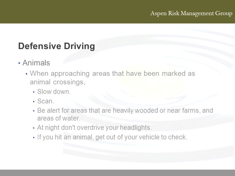 Aspen Risk Management Group Defensive Driving Animals When approaching areas that have been marked as animal crossings, Slow down. Scan. Be alert for