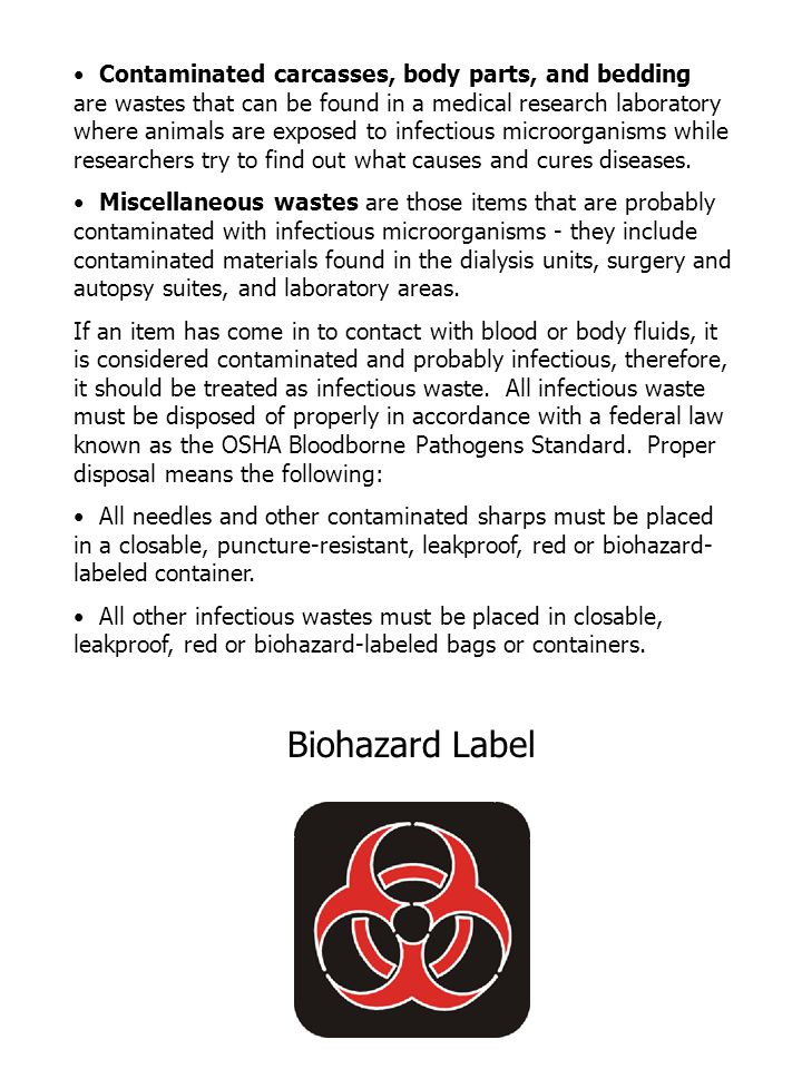 Contaminated carcasses, body parts, and bedding are wastes that can be found in a medical research laboratory where animals are exposed to infectious