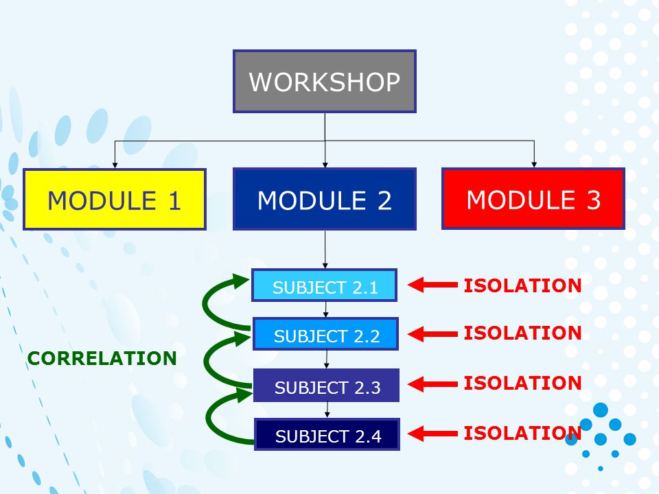 WORKSHOP MODULE 2 MODULE 1 MODULE 3 SUBJECT 2.1 SUBJECT 2.2 SUBJECT 2.3 SUBJECT 2.4 CORRELATION ISOLATION