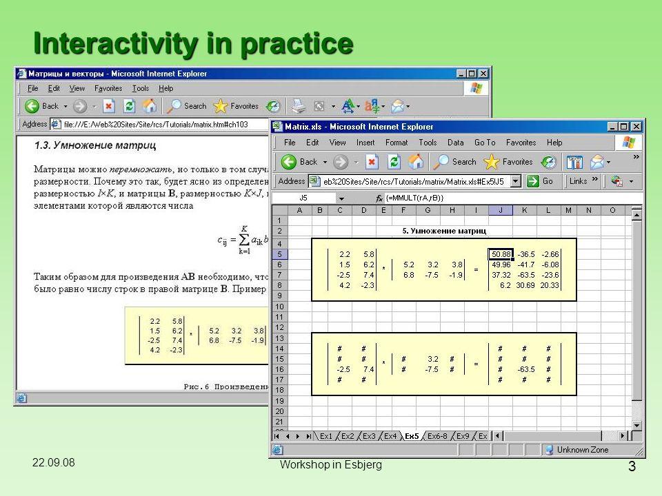 22.09.08 3 Workshop in Esbjerg Interactivity in practice