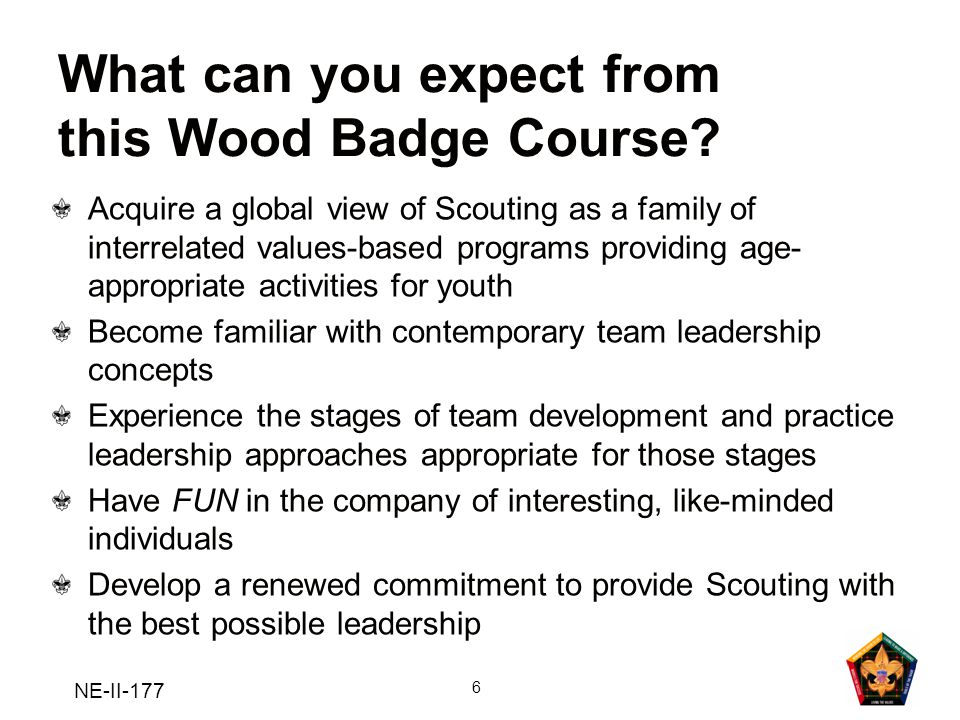 NE-II-177 7 Wood Badge for the 21 st Century Central Themes Living the Values Bringing the Vision to Life Models for Success Tools of the Trade Leading to Make a Difference