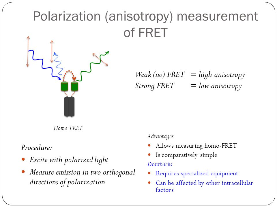 Polarization (anisotropy) measurement of FRET Procedure: Excite with polarized light Measure emission in two orthogonal directions of polarization Adv