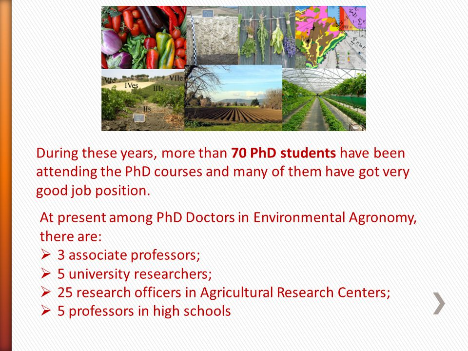 During these years, more than 70 PhD students have been attending the PhD courses and many of them have got very good job position. At present among P