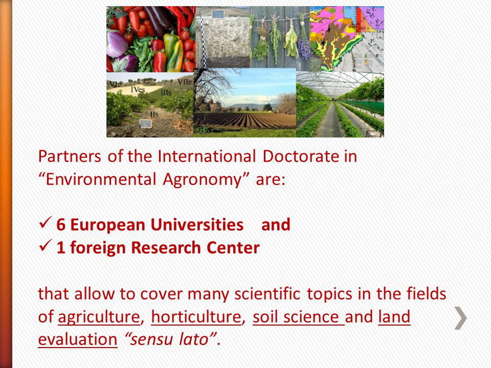 Partners of the International Doctorate in Environmental Agronomy are: 6 European Universities and 1 foreign Research Center that allow to cover many scientific topics in the fields of agriculture, horticulture, soil science and land evaluation sensu lato.