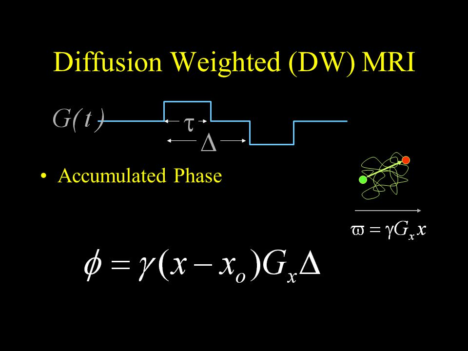 Diffusion Weighted (DW) MRI Accumulated Phase