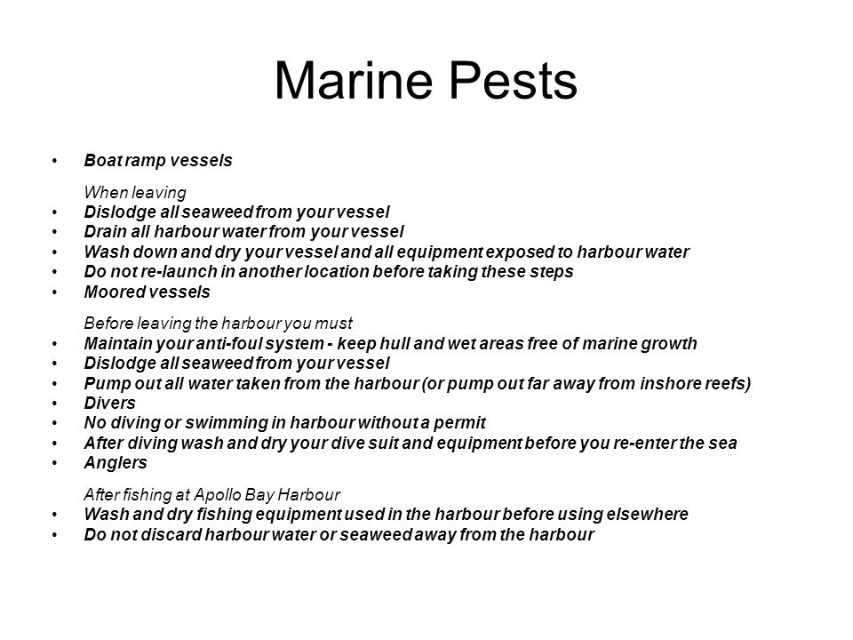 Marine Pests Boat ramp vessels When leaving Dislodge all seaweed from your vessel Drain all harbour water from your vessel Wash down and dry your vess