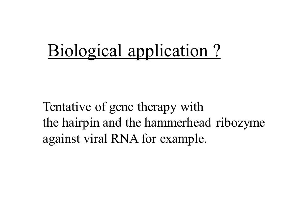 Biological application ? Tentative of gene therapy with the hairpin and the hammerhead ribozyme against viral RNA for example.