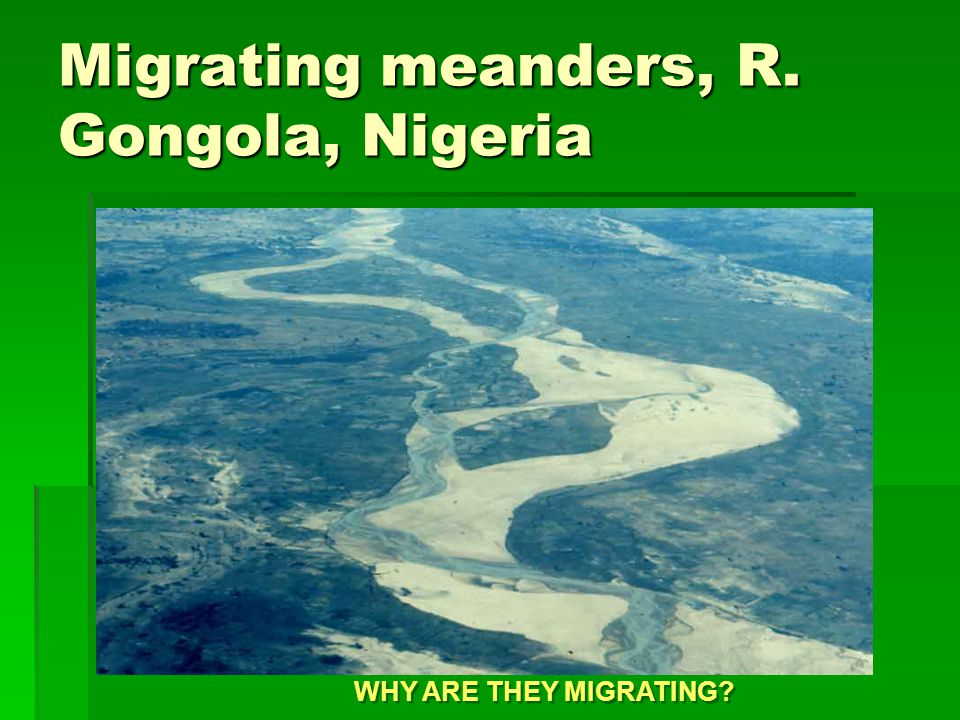 Migrating meanders, R. Gongola, Nigeria WHY ARE THEY MIGRATING?