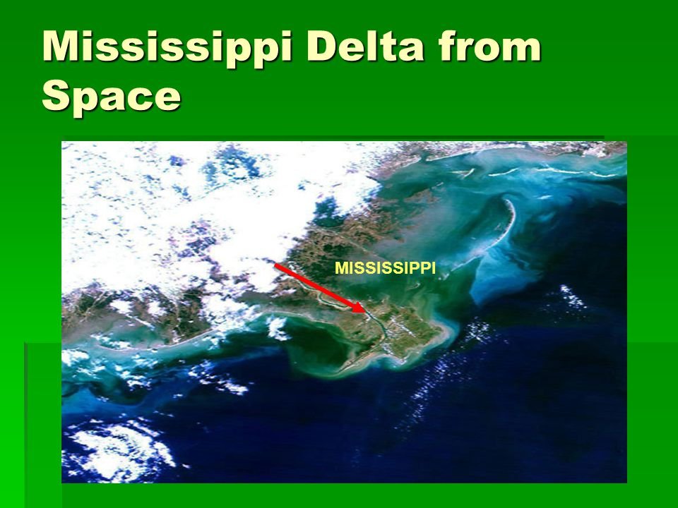 Mississippi Delta from Space MISSISSIPPI