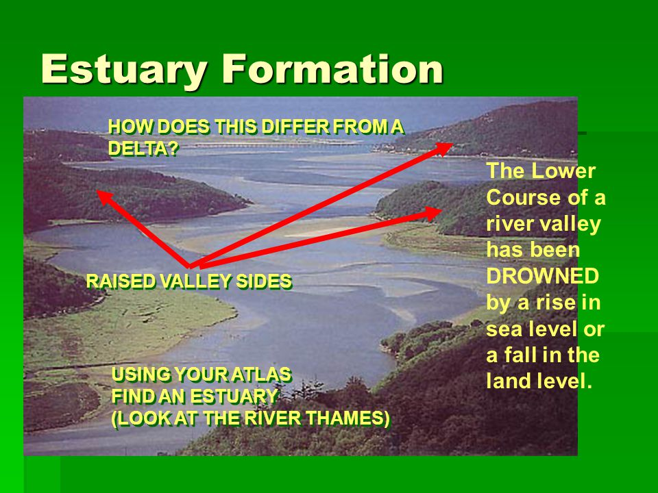 Estuary Formation The Lower Course of a river valley has been DROWNED by a rise in sea level or a fall in the land level. HOW DOES THIS DIFFER FROM A