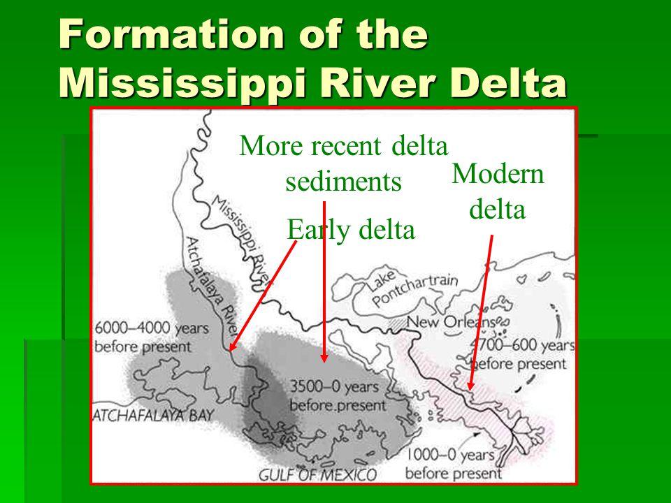 Formation of the Mississippi River Delta Early delta More recent delta sediments Modern delta