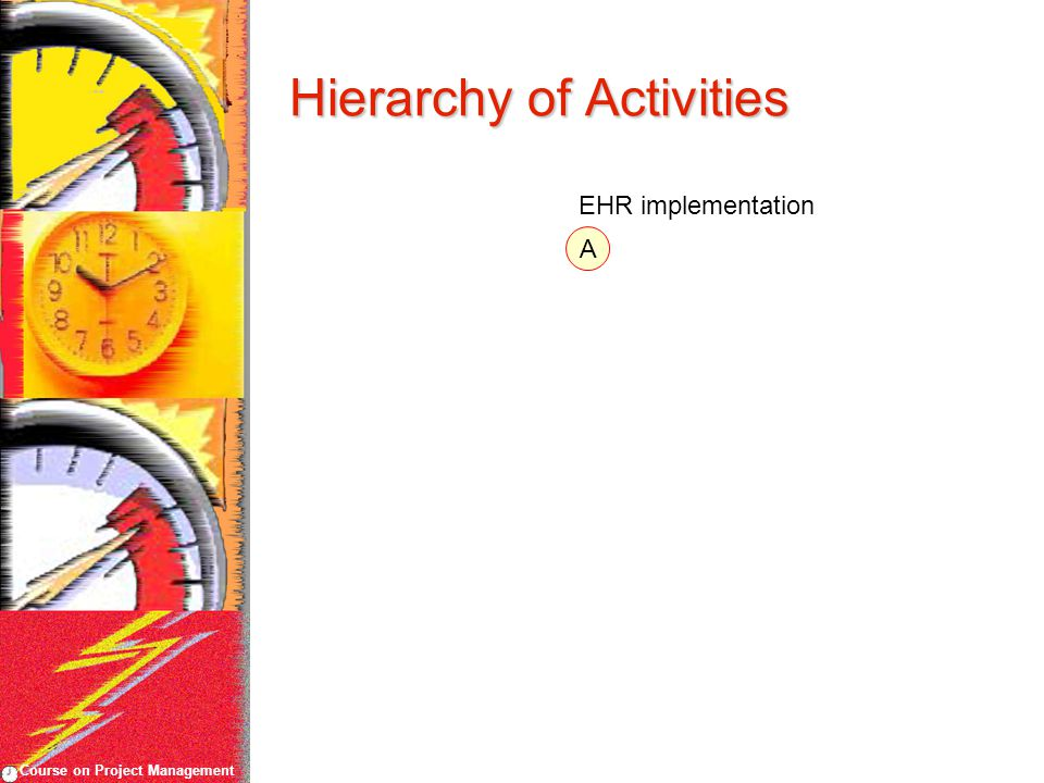 Course on Project Management Hierarchy of Activities A EHR implementation