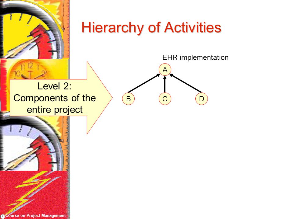 Course on Project Management Hierarchy of Activities A Level 2: Components of the entire project BCD EHR implementation