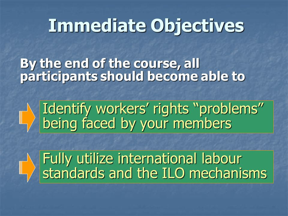 To Achieve Long-Term Objectives, We Need: 11 To promote a structure within trade unions responsible for ILS 22 To strengthen the capacity of unions for developing strategies on ILS 33 To facilitate workers education and training programmes on ILS 44 To build up networks of trade unions on ILS and workers rights issues