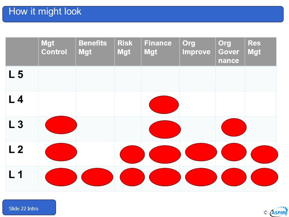 © Slide 22 Intro Mgt Control Benefits Mgt Risk Mgt Finance Mgt Org Improve Org Gover nance Res Mgt L 5 L 4 L 3 L 2 L 1 How it might look