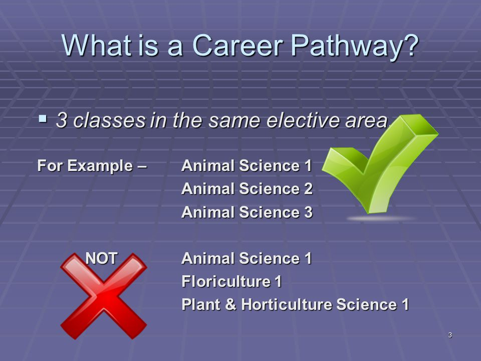 What is a Career Pathway. 3 classes in the same elective area.