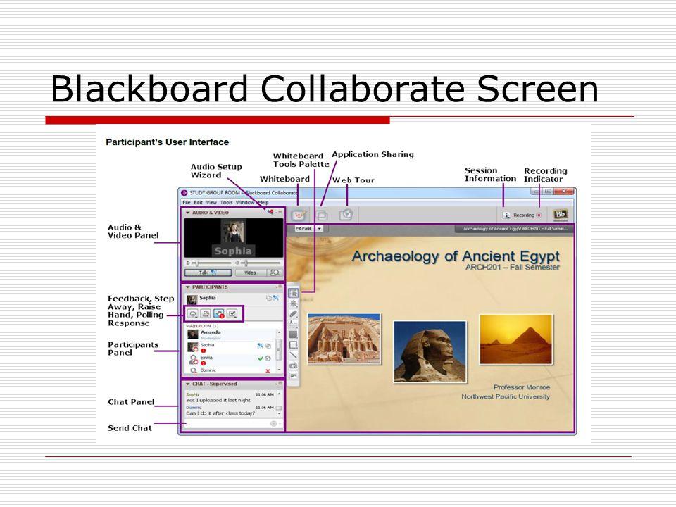 Blackboard Collaborate Screen