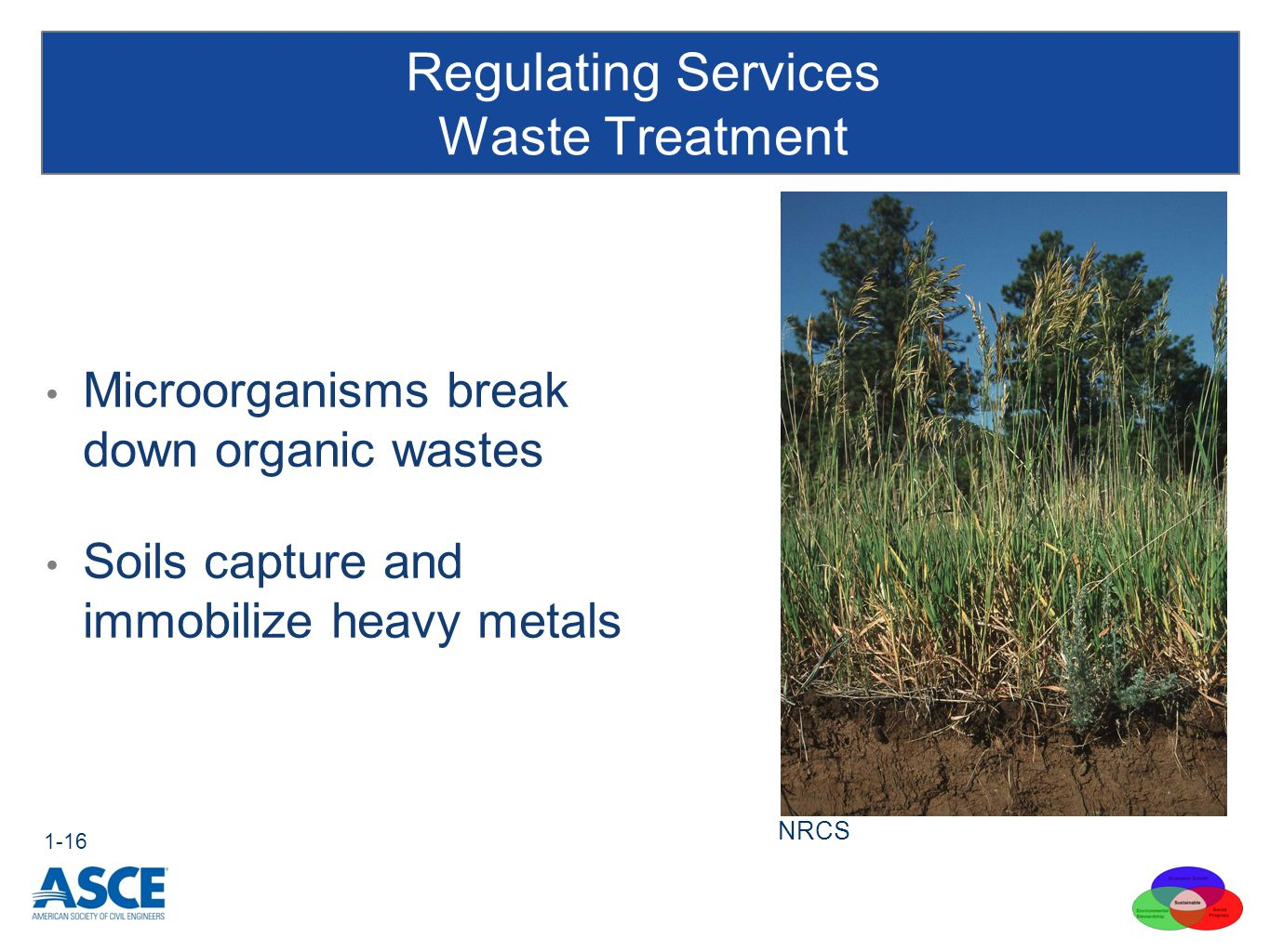 Regulating Services Waste Treatment 1-16 Microorganisms break down organic wastes Soils capture and immobilize heavy metals NRCS