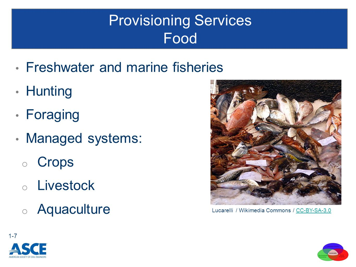 Freshwater and marine fisheries Hunting Foraging Managed systems: o Crops o Livestock o Aquaculture Provisioning Services Food 1-7 Lucarelli / Wikimedia Commons / CC-BY-SA-3.0CC-BY-SA-3.0
