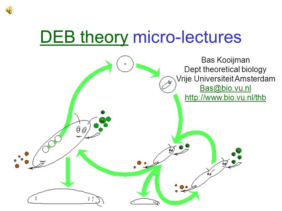 DEB theoryDEB theory micro-lectures Bas Kooijman Dept theoretical biology Vrije Universiteit Amsterdam Bas@bio.vu.nl http://www.bio.vu.nl/thb