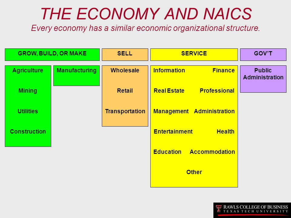 THE ECONOMY AND NAICS Every economy has a similar economic organizational structure. Agriculture Mining Utilities Construction ManufacturingWholesale