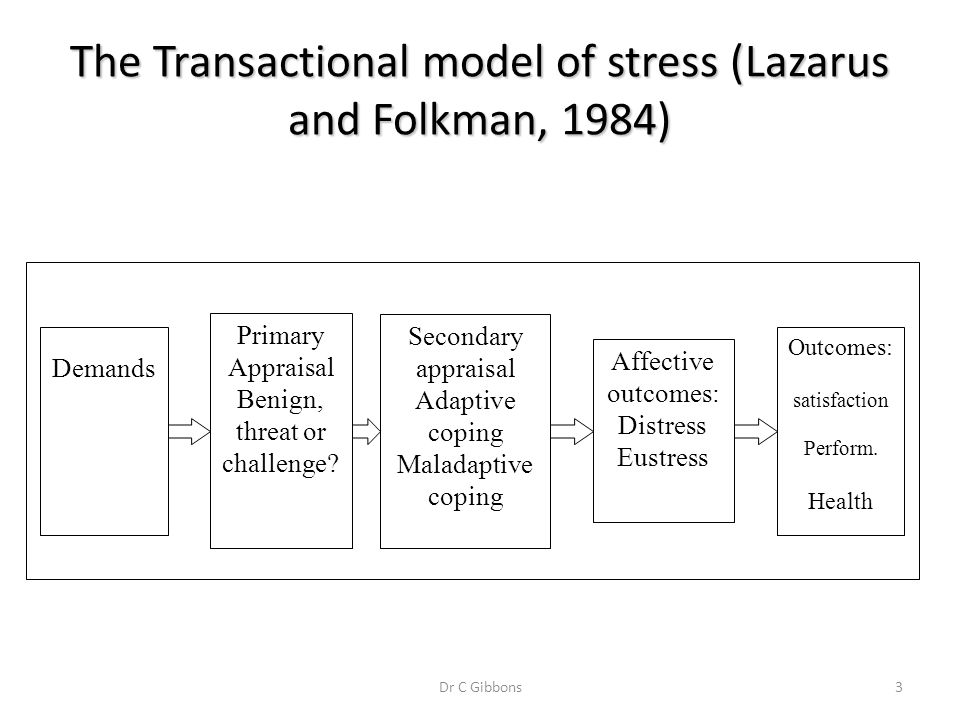 3 The Transactional model of stress (Lazarus and Folkman, 1984) Demands Secondary appraisal Adaptive coping Maladaptive coping Affective outcomes: Dis
