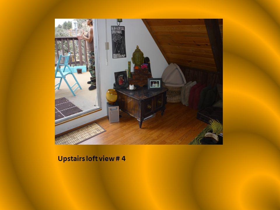 Upstairs loft view # 4