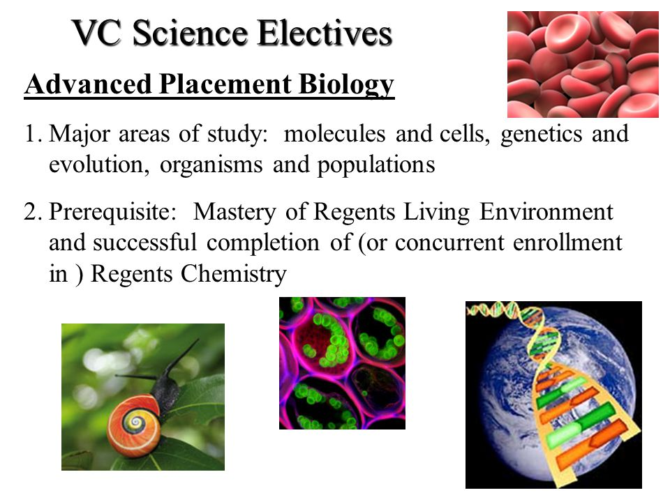 Advanced Placement Biology 1.Major areas of study: molecules and cells, genetics and evolution, organisms and populations 2.Prerequisite: Mastery of R
