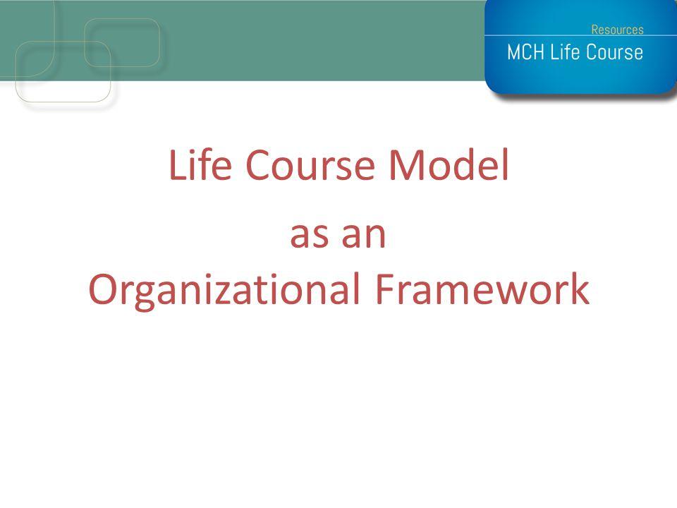 Life Course Model as an Organizational Framework