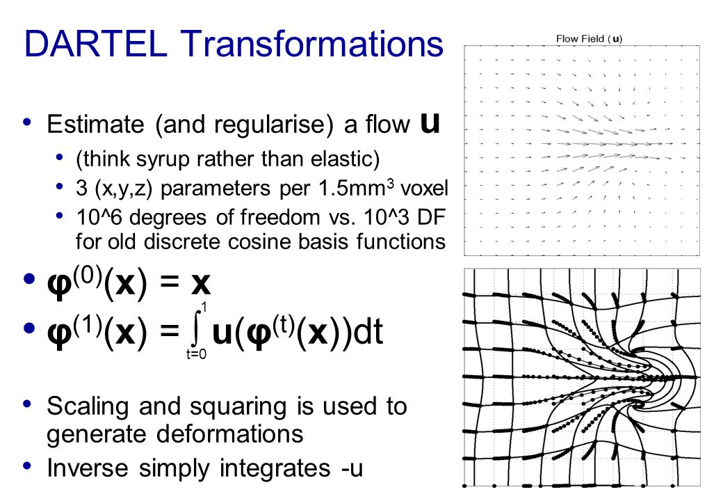 DARTEL Transformations Estimate (and regularise) a flow u (think syrup rather than elastic) 3 (x,y,z) parameters per 1.5mm 3 voxel 10^6 degrees of fre