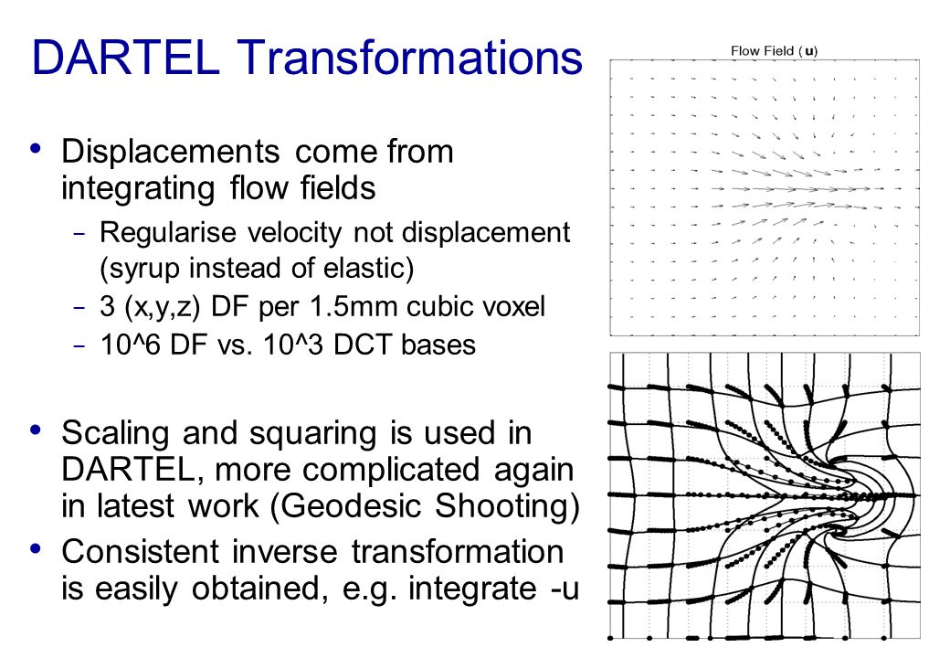 DARTEL Transformations Displacements come from integrating flow fields Regularise velocity not displacement (syrup instead of elastic) 3 (x,y,z) DF pe