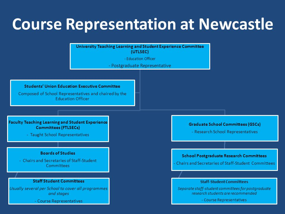 Course Representation at Newcastle University Teaching Learning and Student Experience Committee (UTLSEC) - Education Officer - Postgraduate Representative Faculty Teaching Learning and Student Experience Committees (FTLSECs) - Taught School Representatives Boards of Studies - Chairs and Secretaries of Staff-Student Committees Staff Student Committees Usually several per School to cover all programmes and stages - Course Representatives Graduate School Committees (GSCs) - Research School Representatives School Postgraduate Research Committees - Chairs and Secretaries of Staff-Student Committees Staff-Student Committees Separate staff-student committees for postgraduate research students are recommended - Course Representatives Students Union Education Executive Committee Composed of School Representatives and chaired by the Education Officer