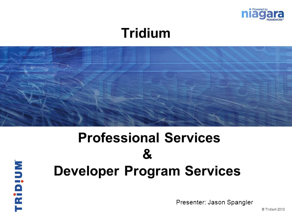 Professional Services & Developer Program Services Presenter: Jason Spangler © Tridium 2013 Tridium