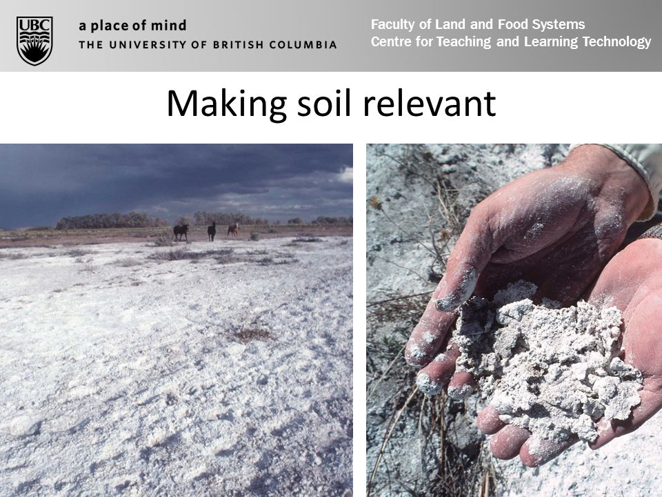 Making soil relevant Faculty of Land and Food Systems Centre for Teaching and Learning Technology