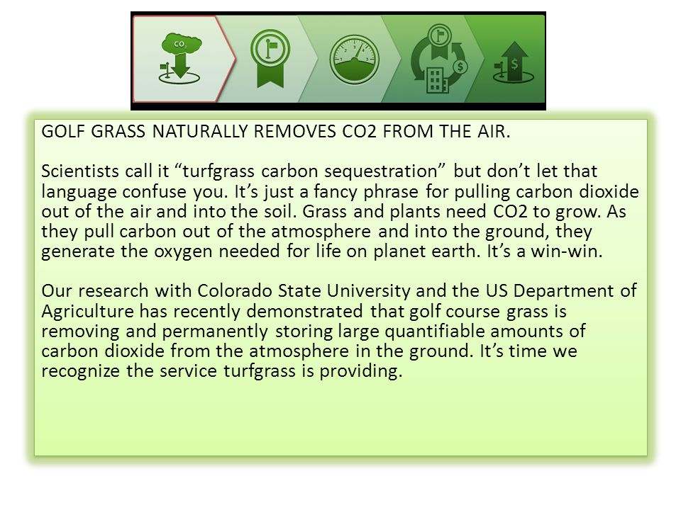 GOLF GRASS NATURALLY REMOVES CO2 FROM THE AIR.